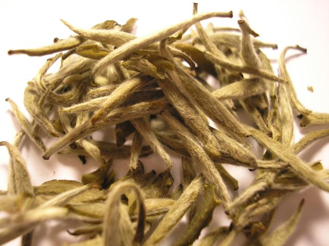 Difference Between White Tea and Green Tea
