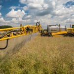 Difference Between Herbicide and Insecticide