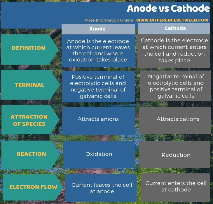 Difference Between Anode and Cathode - Tabular Form