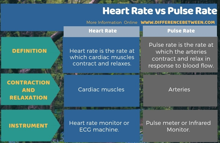 Difference Between Heart Rate and Pulse Rate in Tabular Form