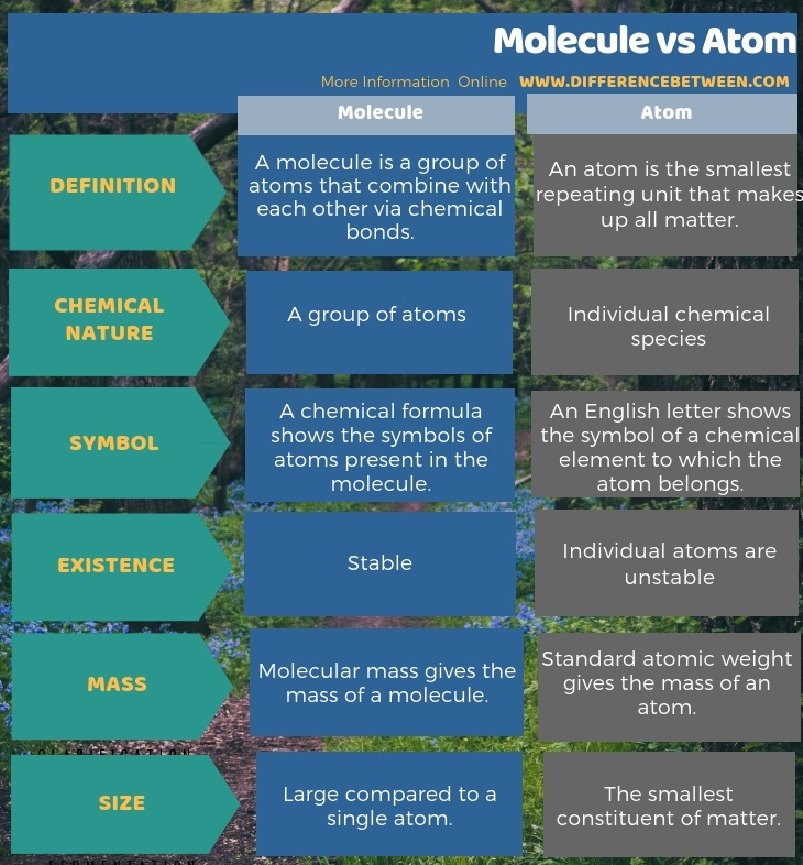 Difference Between Molecule and Atom in Tabular Form