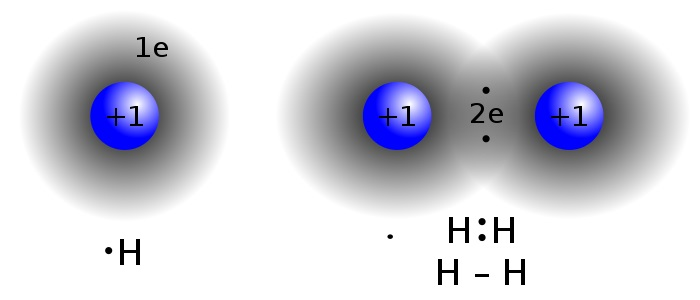 Difference Between Molecule and Atom