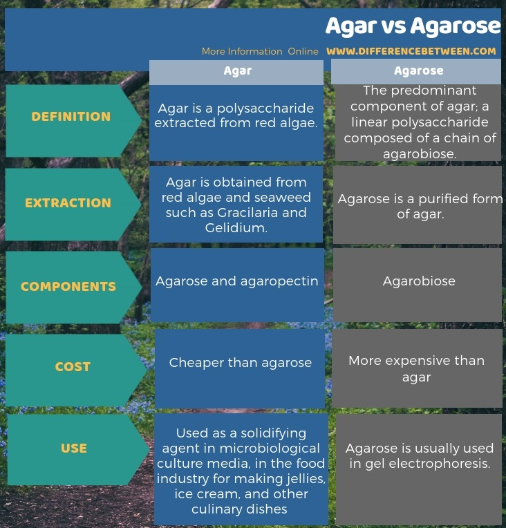 Difference Between Agar and Agarose in Tabular Form