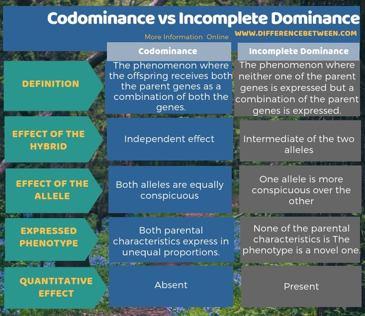 Difference Between Codominance and Incomplete Dominance in Tabular Form