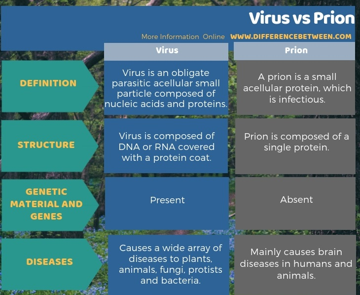 Difference Between Virus and Prion in Tabular Form
