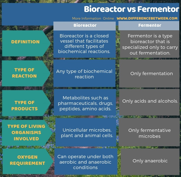 Difference Between Bioreactor and Fermentor in Tabular Form