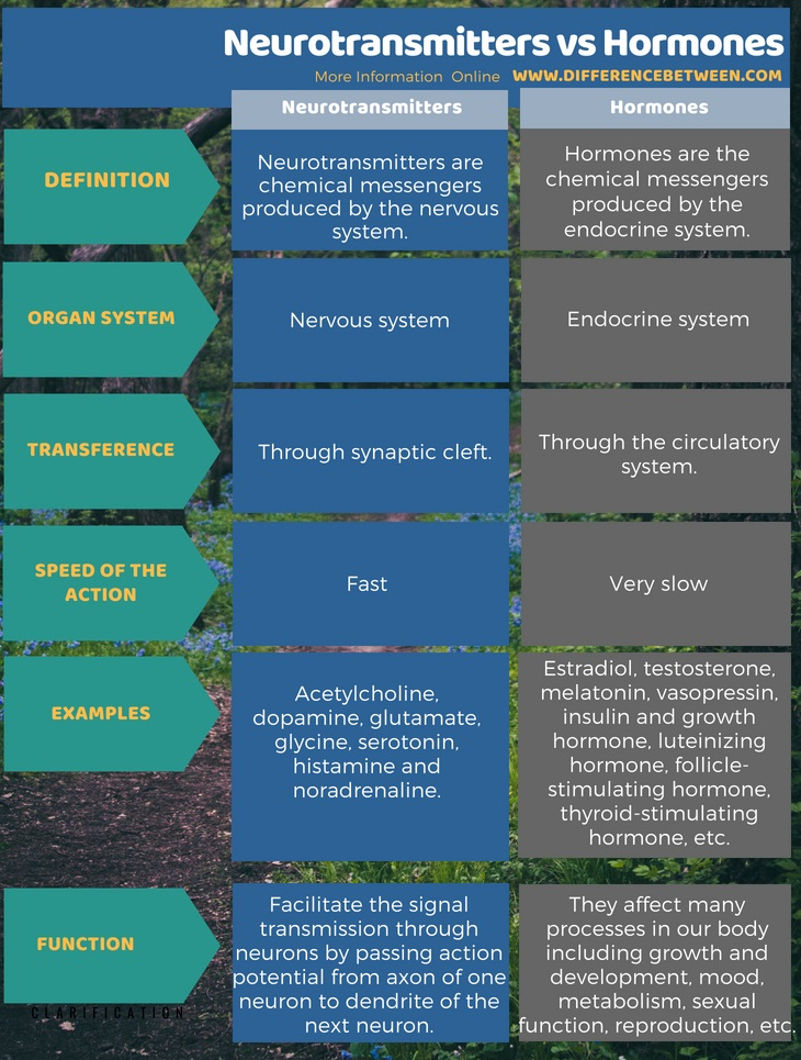 Difference Between Neurotransmitters and Hormones in Tabular Form