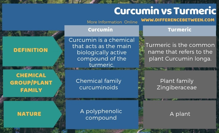 Difference Between Curcumin and Turmeric in Tabular Form