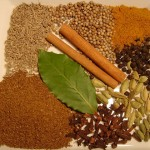 Difference Between Curry Powder and Garam Masala