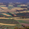 Difference Between Ecological Succession and Rural Succession