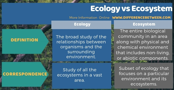 Difference Between Ecology and Ecosystem in Tabular Form