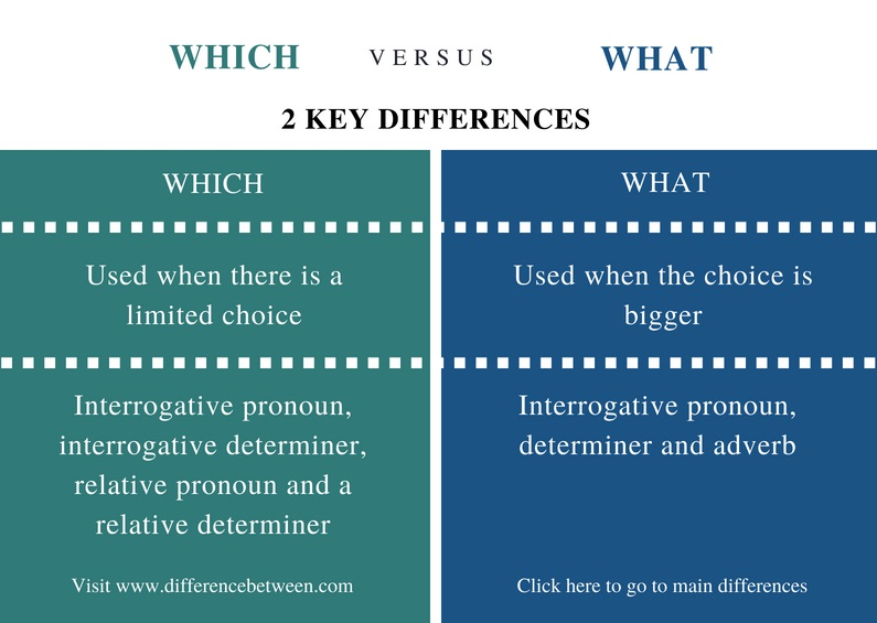 difference between which and what compare the difference