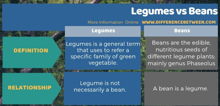 Difference Between Legumes and Beans in Tabular Form