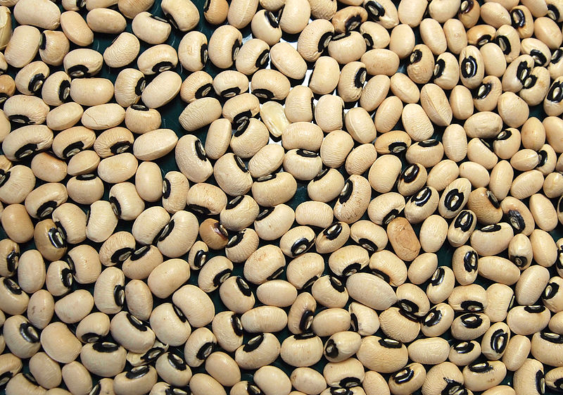 Key Difference Between Legumes and Beans