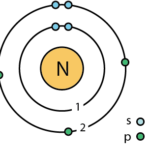 Difference Between Nitrogen and Nitrate