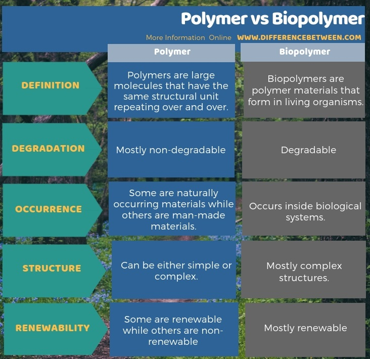 Difference Between Polymer and Biopolymer in Tabular Form