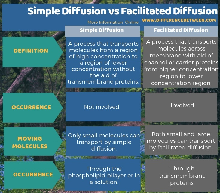 Difference Between Simple Diffusion and Facilitated Diffusion in Tabular Form