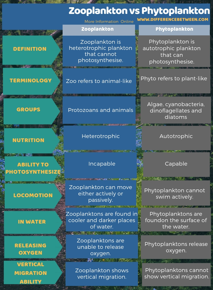 Difference Between Zooplankton and Phytoplankton in Tabular Form