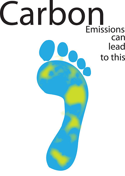 Key Difference Between Ecological Footprint and Carbon Footprint