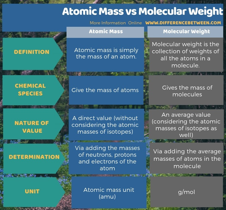 Difference Between Atomic Mass and Molecular Weight