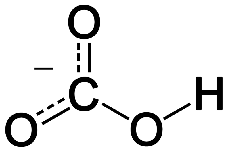 Difference Between Carbonate and Bicarbonate