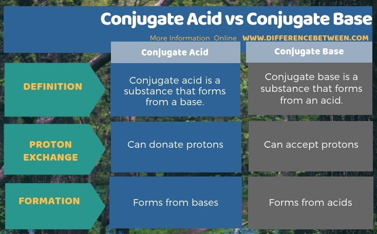 Difference Between Conjugate Acid and Conjugate Base in Tabular Form