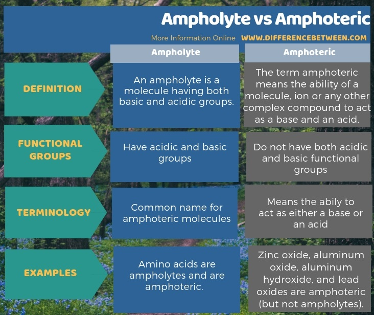 Difference Between Ampholyte and Amphoteric in Tabular Form