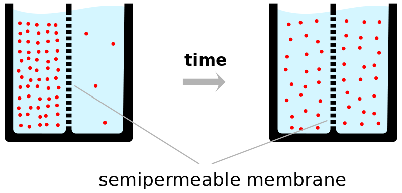 Key Difference Between Brownian Motion and Diffusion