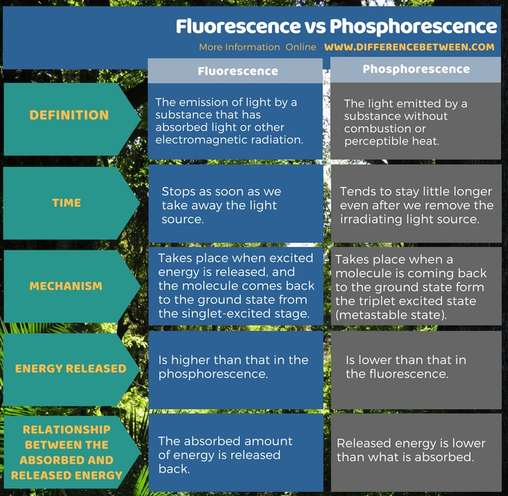 Difference Between Fluorescence and Phosphorescence in Tabular Form