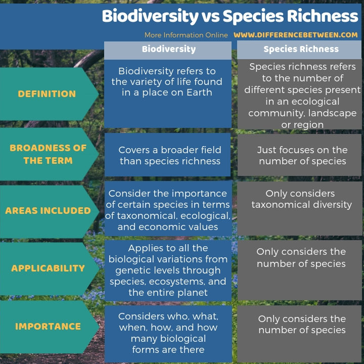 Difference Between Biodiversity and Species Richness in Tabular Form