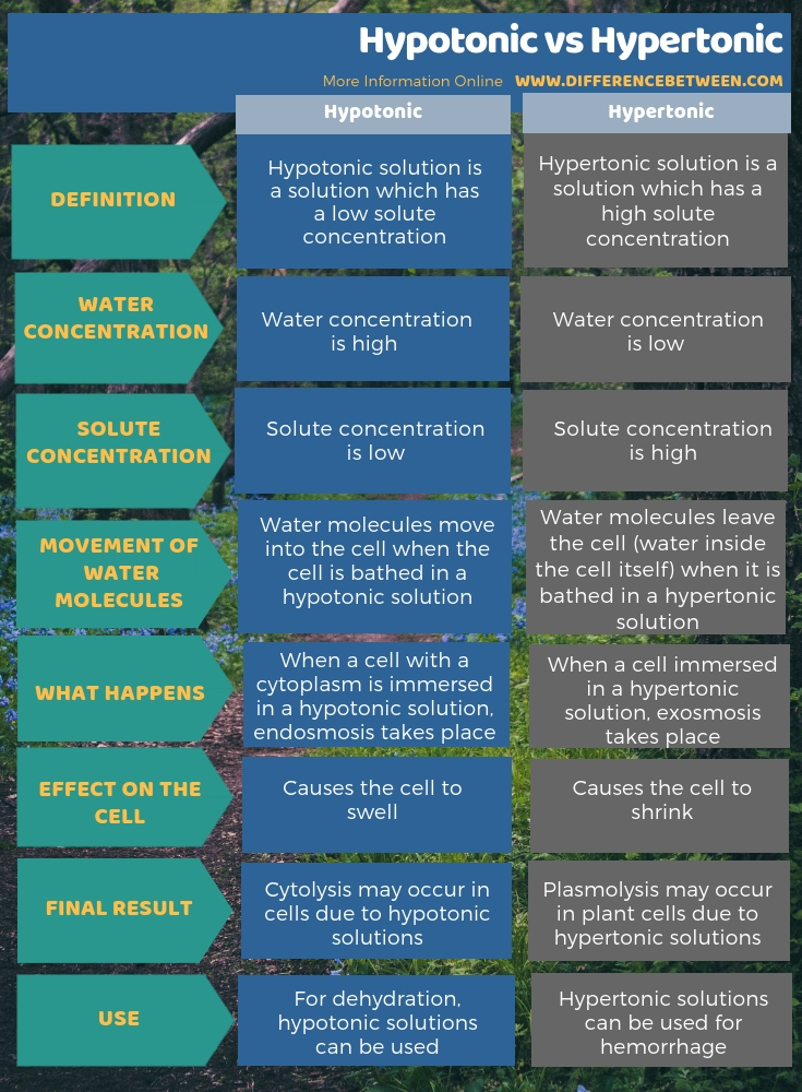 Difference Between Hypotonic and Hypertonic in Tabular Form