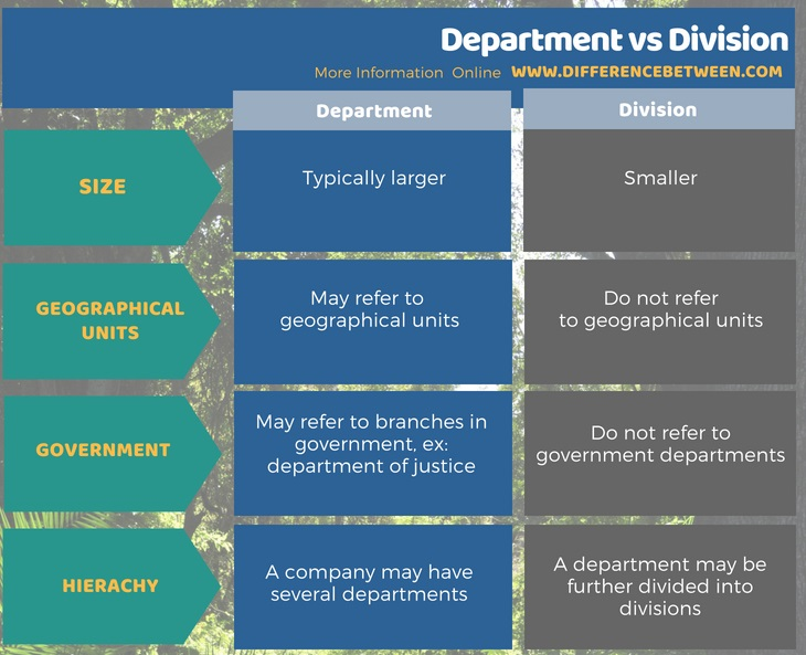 Difference Between Department and Division in Tabular Format