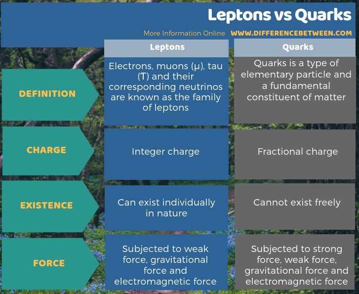 Difference Between Leptons and Quarks in Tabular Form