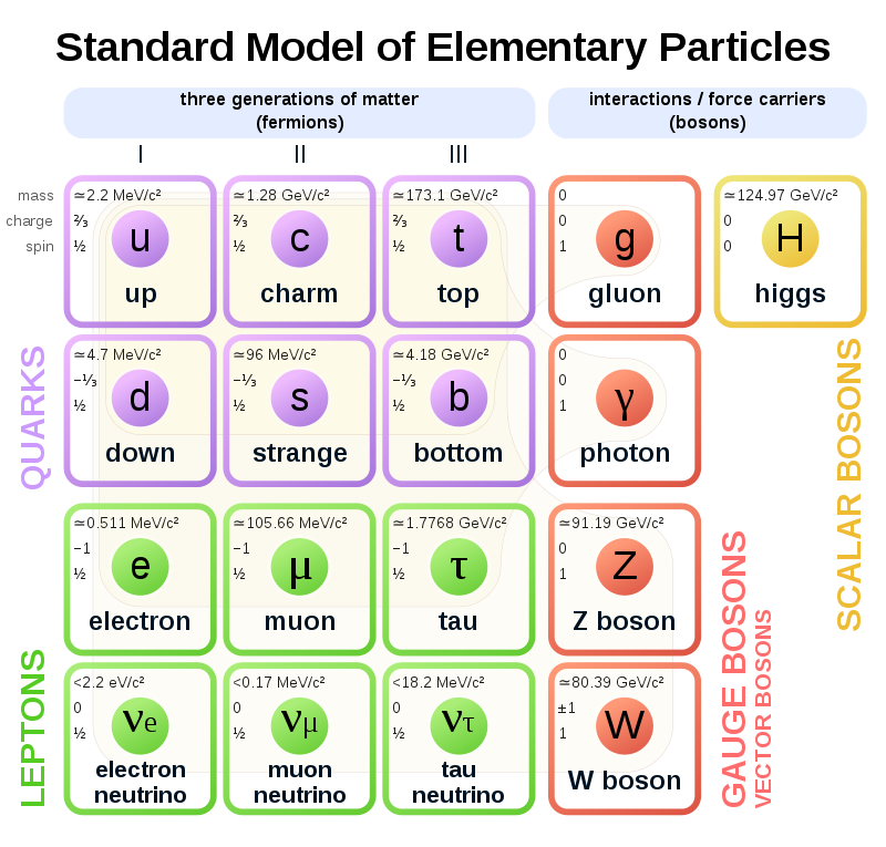 Difference Between Leptons and Quarks