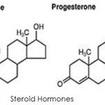 Difference Between Testosterone and Steroids