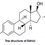 Difference Between Estriol and Estradiol