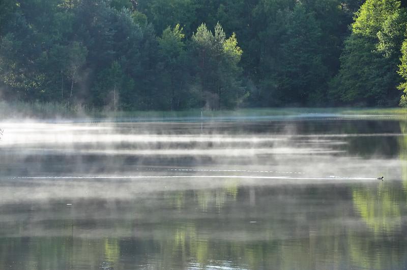 Key Difference - Evaporation vs Vaporization