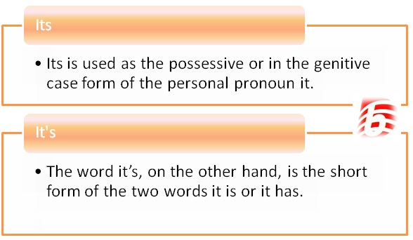 Difference Between Its and It's in English Grammar