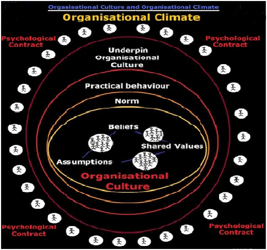 Difference Between Organizational Culture and Climate