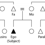 Difference Between Parallel and Cross Cousins