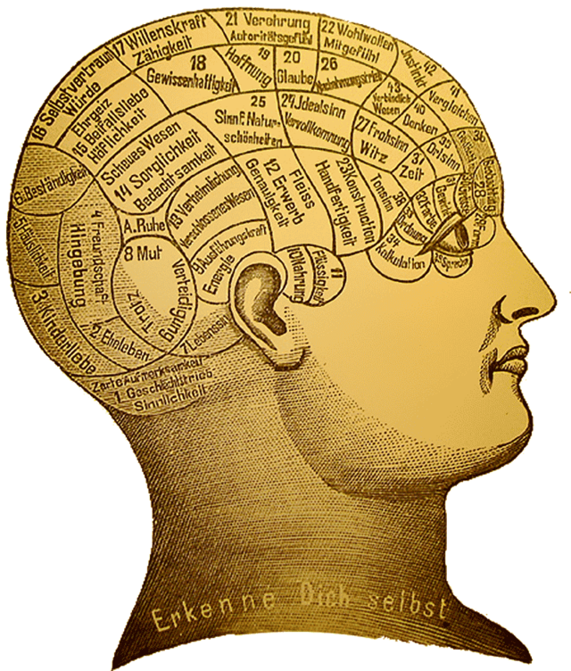 Difference Between Philosophy and Psychology- Psychology