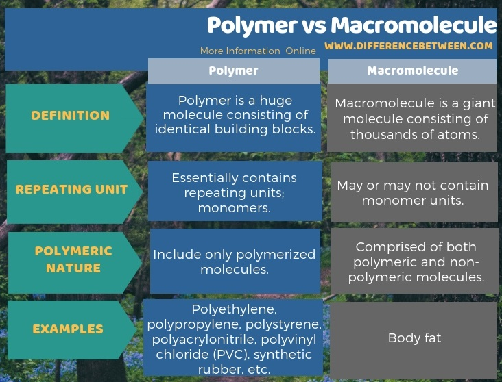 Difference Between Polymer and Macromolecule in Tabular Form