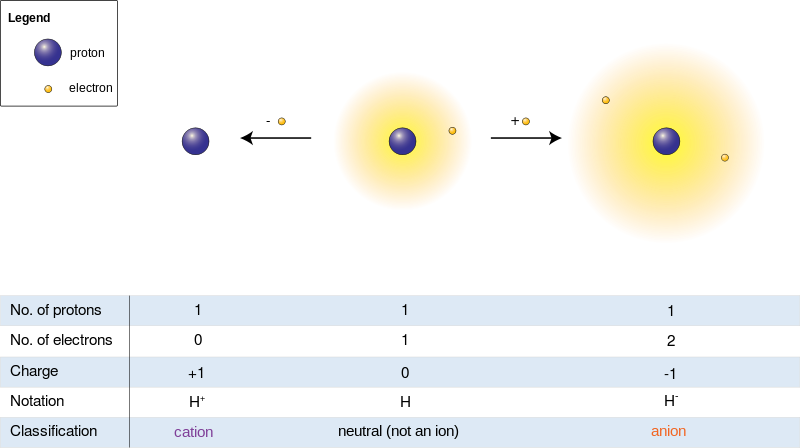 Difference Between Free Radical and Ion_Fig 02
