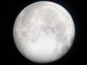 Full Moon vs New Moon