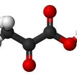 Difference Between Pyruvate and Pyruvic Acid