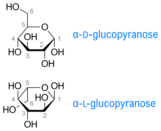 Difference Between D and L Glucose