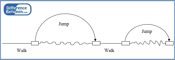 Key Difference - Chromosome Walking vs Jumping