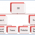 Difference Between Functional and Divisional Structure