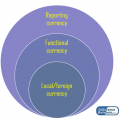 Difference Between Translation and Remeasurement
