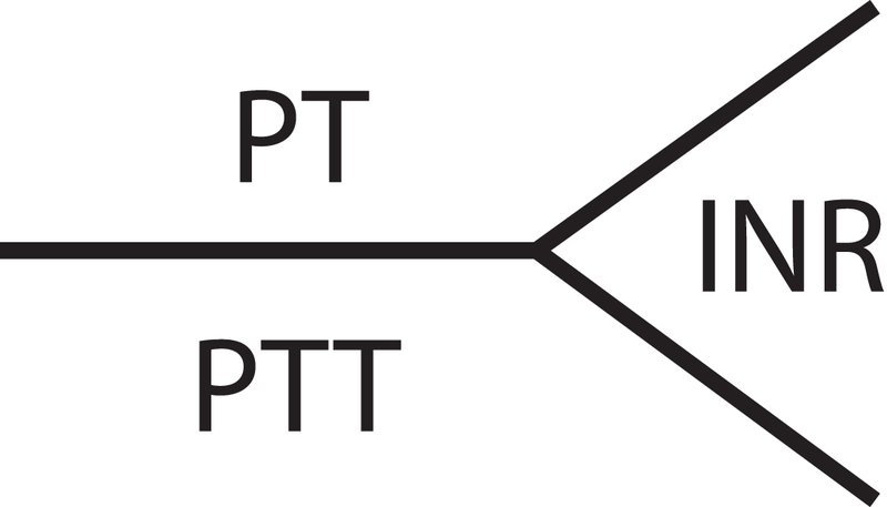 difference between pt and ptt